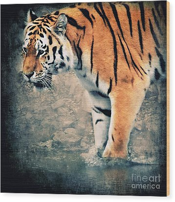 The Tiger Wood Print by Angela Doelling AD DESIGN Photo and PhotoArt