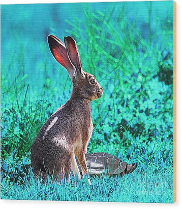 The Tortoise And The Hare . Cyan Square Wood Print by Wingsdomain Art and Photography