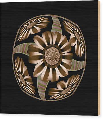 The Transformation Of Flower 5 - Reaching For The Sun Wood Print by Jacqueline Migell