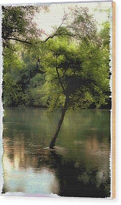 The Tree Island Wood Print by Ken Gimmi