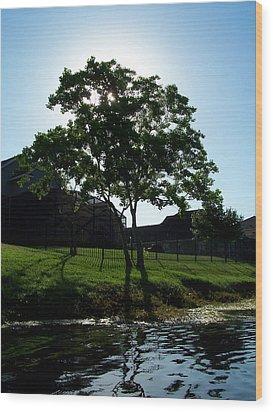 The Tree Of Toho Wood Print