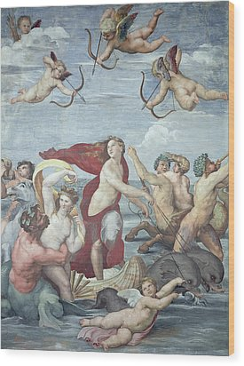 The Triumph Of Galatea Wood Print by Raphael