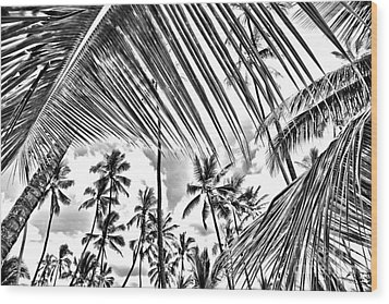 Wood Print featuring the photograph The Tropics by DJ Florek