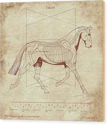 The Trot - The Horse's Trot Revealed Wood Print