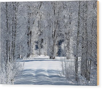 The Untraveled Winter Road Wood Print