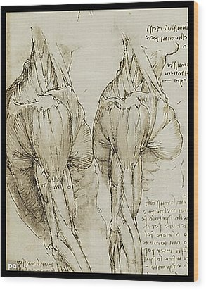 Wood Print featuring the painting The Upper Arm Muscles by James Christopher Hill