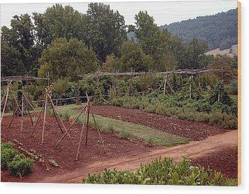 The Vegetable Garden At Monticello II Wood Print by LeeAnn McLaneGoetz McLaneGoetzStudioLLCcom