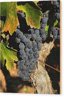 The Vineyard One Wood Print