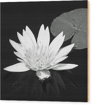 The Vintage Lily II Wood Print by Melanie Moraga