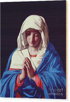 The Virgin In Prayer Wood Print by Il Sassoferrato