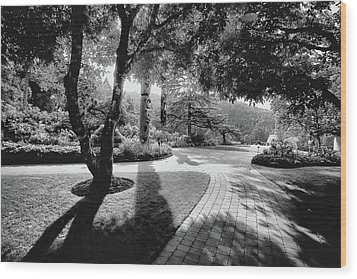 The Walkway Bw Wood Print by Lawrence Christopher