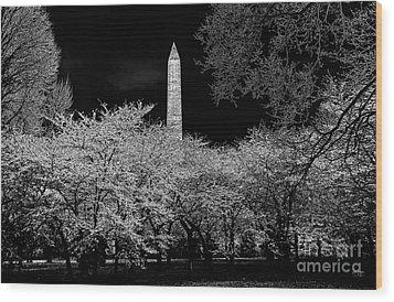 The Washington Monument At Night Wood Print by Lois Bryan