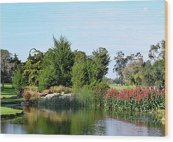 Wood Print featuring the photograph The Water On Number One Santa Maria Country Club by Barbara Snyder