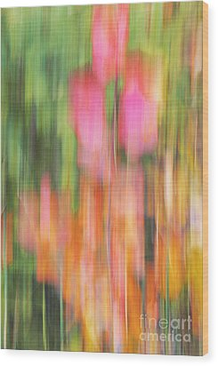 The Watercolor Garden Wood Print by Aimelle