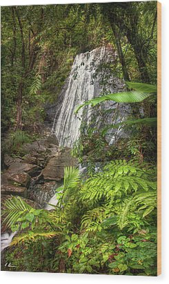 Wood Print featuring the photograph The Waterfall by Hanny Heim