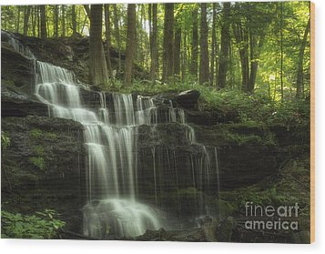 The Waterfall In The Forest Wood Print