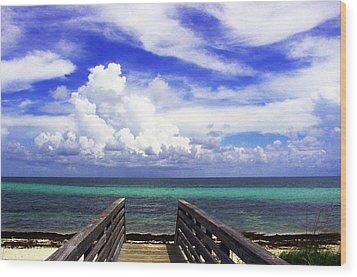 The Way To The Beach 2 Wood Print by Susanne Van Hulst