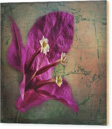 Wood Print featuring the photograph The Well Dressed Bougainvillea by Bellesouth Studio