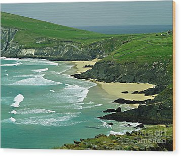 The West Coast Of Ireland Wood Print by Patricia Griffin Brett