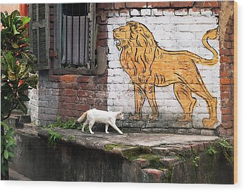 The White Cat Wood Print by Marji Lang