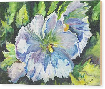 The White Hibiscus In Early Morning Light Wood Print by Carol Wisniewski