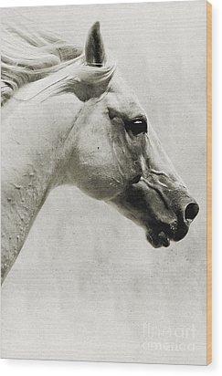 The White Horse IIi - Art Print Wood Print