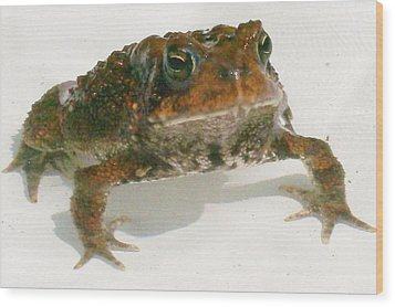 Wood Print featuring the digital art The Whole Toad by Barbara S Nickerson