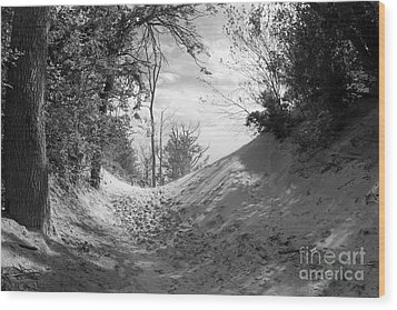 The Windy Path Wood Print by Cathy  Beharriell
