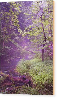 The Wonder Of Nature  Two Wood Print