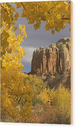The Yellow Leaves Of Fall Frame A Rock Wood Print by Ralph Lee Hopkins
