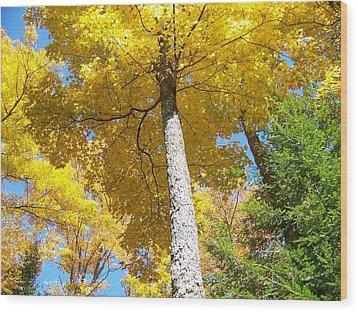The Yellow Umbrella - Photograph Wood Print by Jackie Mueller-Jones