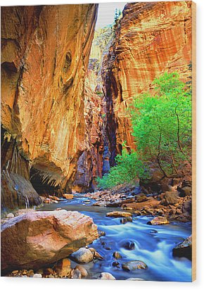 The Zion Narrows Wood Print