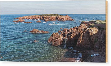 Wood Print featuring the photograph Theoule-sur-mer by Ron Dubin