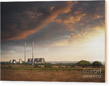 Thermoelectrical Plant Wood Print by Carlos Caetano