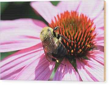 Wood Print featuring the photograph Think Bees by Paula Guttilla