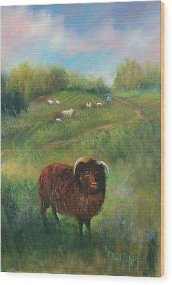 Thinking Of Ewe Wood Print by Sally Seago