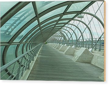 Third Millenium Bridge, Zaragoza, Spain Wood Print