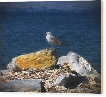 This Gull Has Flown Wood Print
