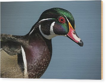 Wood Print featuring the photograph This Is My Good Side by Elvira Butler