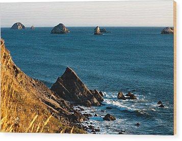 This Is Oregon State 1 - The Oregon Coast Wood Print by Paul W Sharpe Aka Wizard of Wonders