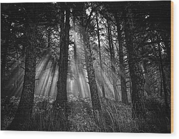 This Is Our World - No.1 - Forest Floor Morning Mist Bw Wood Print by Paul W Sharpe Aka Wizard of Wonders