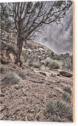 This Is Utah No. 9 - Morning At Williams Arch Wood Print by Paul W Sharpe Aka Wizard of Wonders