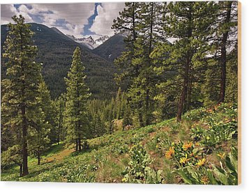 This Is Washington State No.1 - Klipchuck Wood Print by Paul W Sharpe Aka Wizard of Wonders