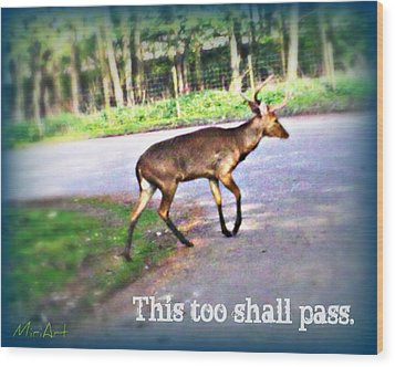 This Too Shall Pass Wood Print