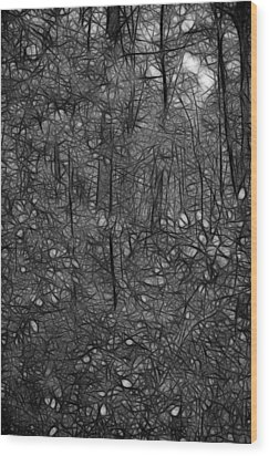Thoreau Woods Black And White Wood Print by Lawrence Christopher