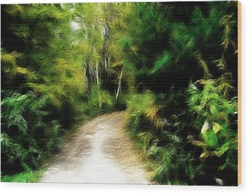 Thoreau Woods Wood Print by Lawrence Christopher