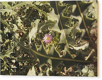 Thorn Love Wood Print by Oscar Moreno