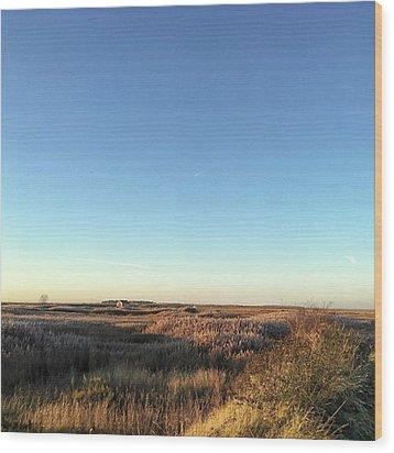 Thornham Marsh Lit By The Setting Sun Wood Print