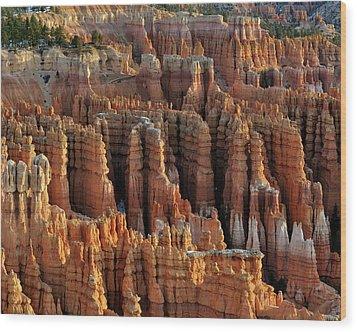 Those Hoodoo's.  Bryce Canyon Wood Print by John Rav