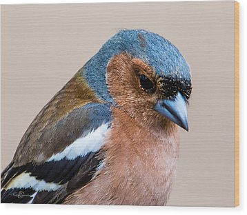 Thoughtful Wood Print by Torbjorn Swenelius